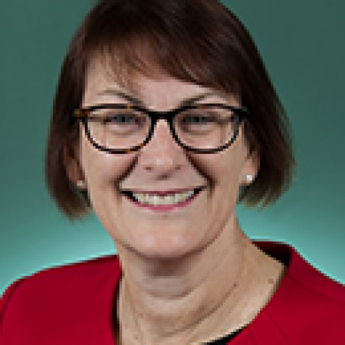 Susan Templeman MP profile image